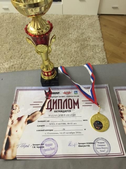 Кубок Федерации по спортивной борьбе